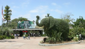 The World Famous San Diego Zoo